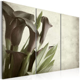 Canvas Print - callas - vintage