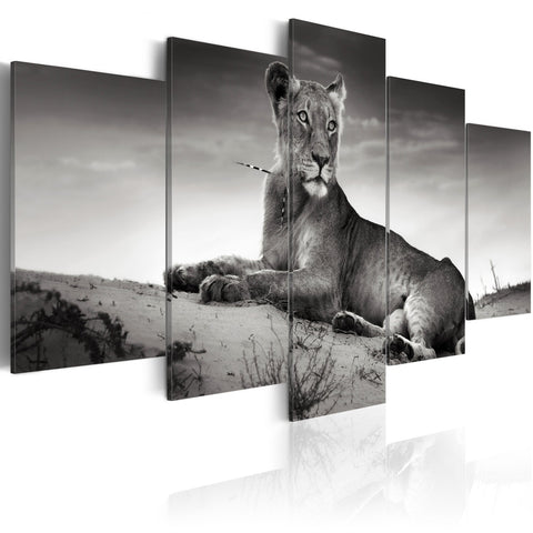 Canvas Print - Lioness in a desert