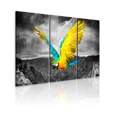 Canvas Print - Bird-of-paradise