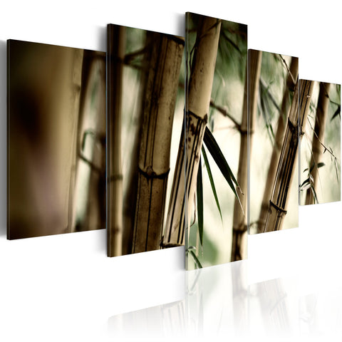 Canvas Print - Asian bamboo forest