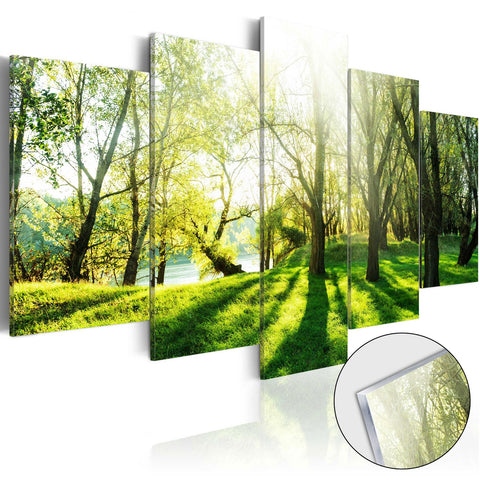 Acrylic Print - Green Glade [Glass]