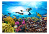 Wallpaper - Coral reef