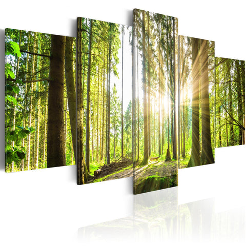 Canvas Print - Forest Kingdom