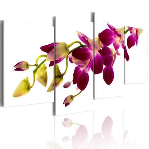 Canvas Print - Orchid's glow