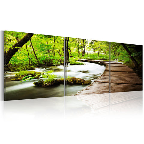 Canvas Print - Forest Brook