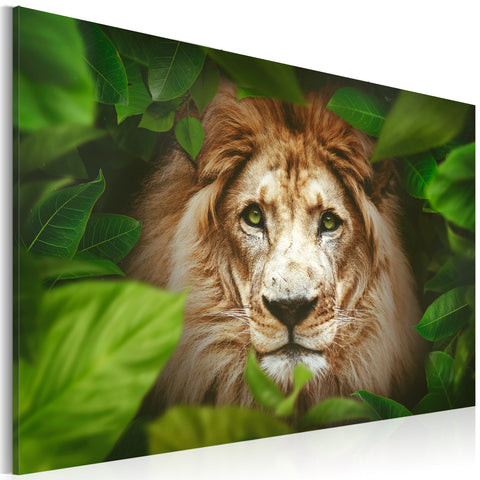 Canvas Print - Eyes of the jungle