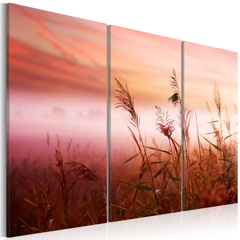 Canvas Print - A silent meadow