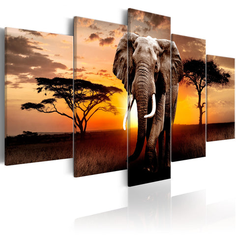 Canvas Print - Elephant Migration