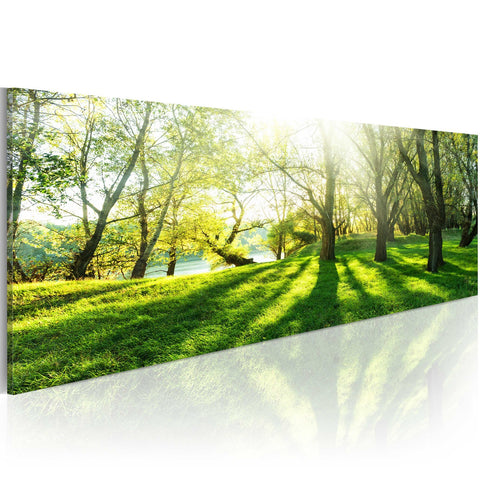 Canvas Print - Rays of Sunshine