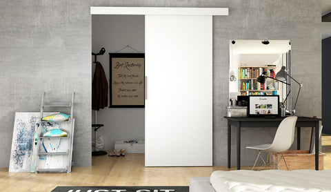 ERTA 1 - Modern Suspended Sliding Door, you can use as a room divider or a walk in wardrobe