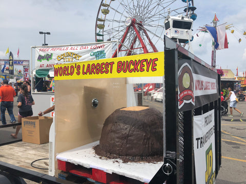 World's Largest Buckeye at the Ohio State Fair!