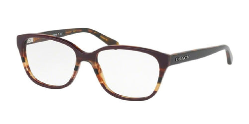 7pm view of Coach Eyeglasses - FUN ABOUT TOWN HC6103 5478 52 OXBLOOD HAVANA TORTOISE VARSITY STRIPE DEEP PURPLE BROWN CLEAR DEMO LENS Women's Square Full Rim