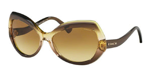 7pm view of Coach Sunglasses - L1588 DOWNTOWN HC8177 54002L 59 GRADIENT OLIVE BROWN GREEN AMBER Women's Full Rim