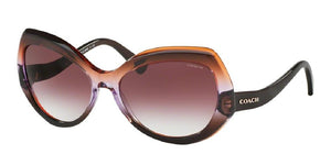 7pm view of Coach Sunglasses - L1588 DOWNTOWN HC8177 54018H 59 GRADIENT PURPLE BROWN PURPLE Women's Full Rim
