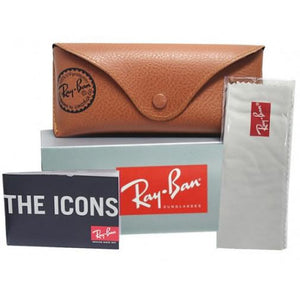 Carrying case and Brand Paperwork for Ray-Ban Sunglasses - CLUBMASTER ALUMINUM ICONS RB3507 136/N5 51 GOLD POLARIZED BLACK ARISTA GREEN Men's / Women's Square Full Rim