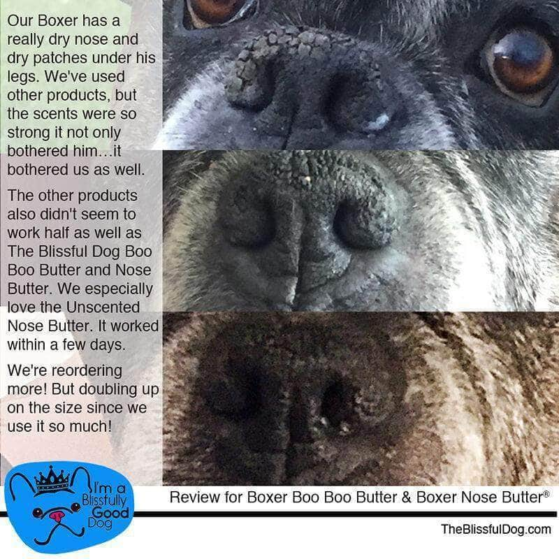 boxer before after nose butter