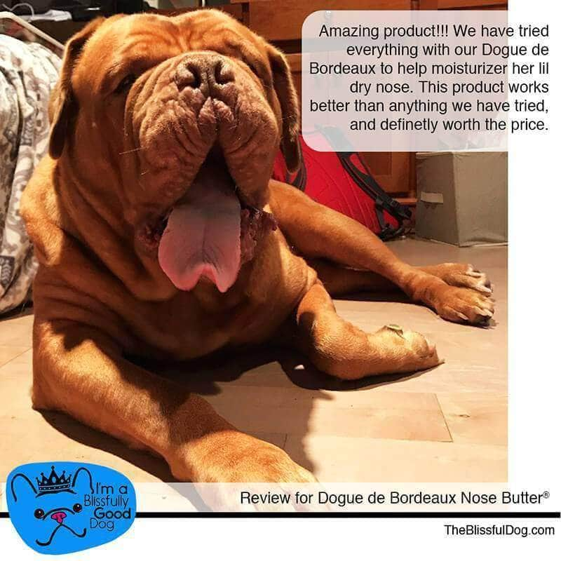 dogue de bordeaux nose butter review
