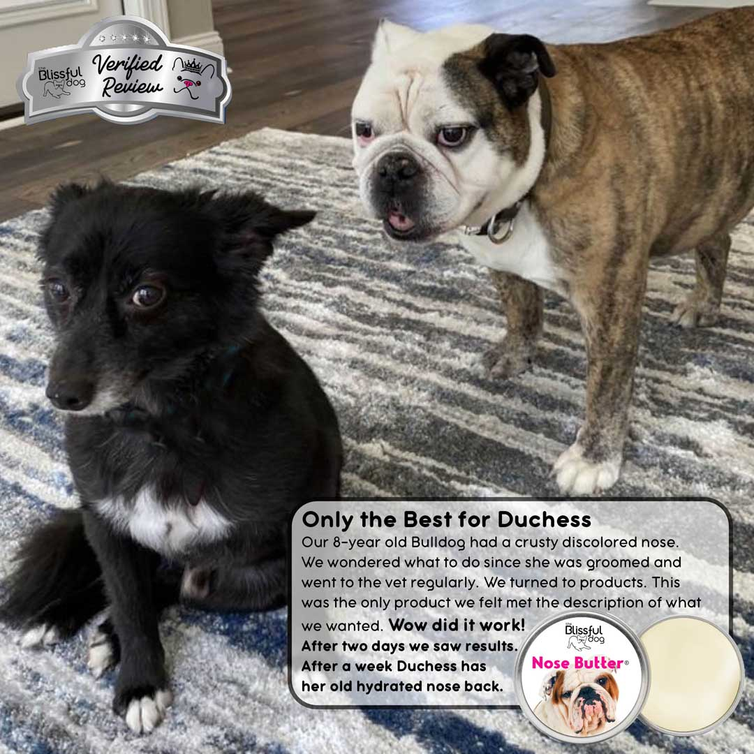 duchess bulldog nose butter review