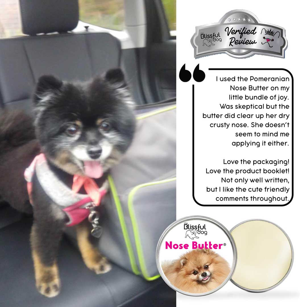 Pomeranian dog review for nose butter