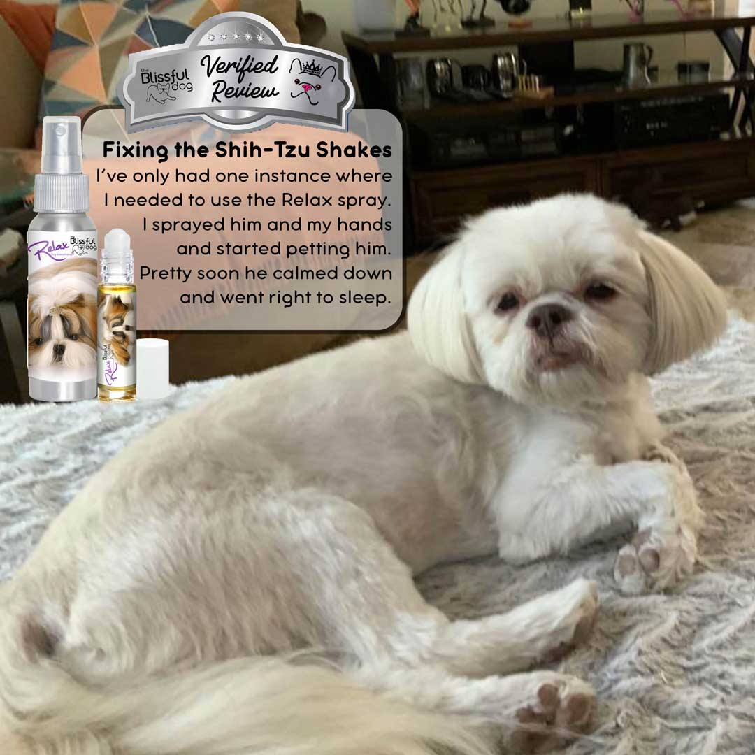 Shih Tzu relax aromatherapy review
