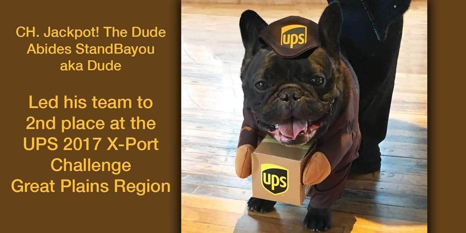 The Blissful Dog 2017 UPS X-PORT CHALLENGE