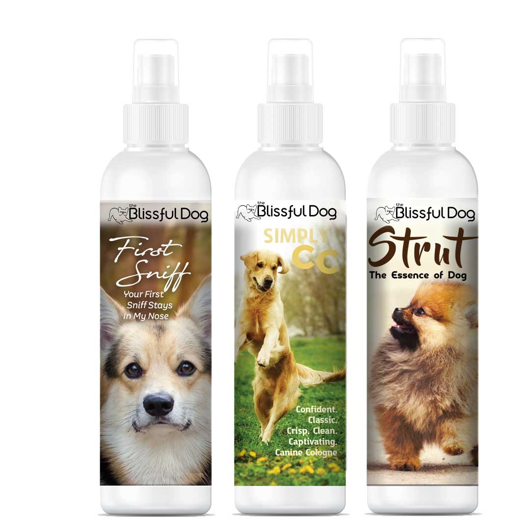 Dog Colognes Sniffing Irresistible