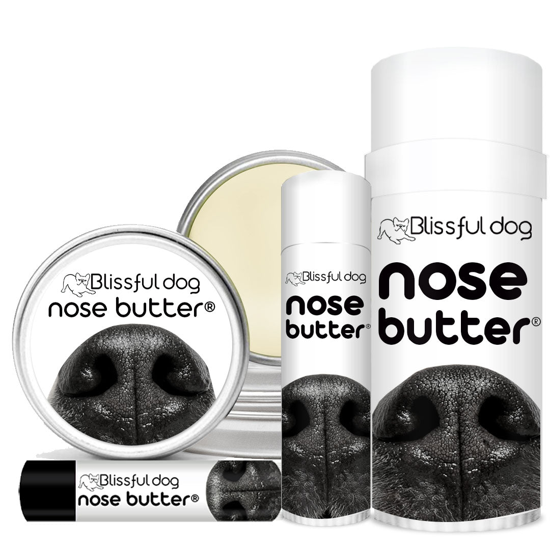 Nose Butter® Soothes Your Dog's Dry Nose