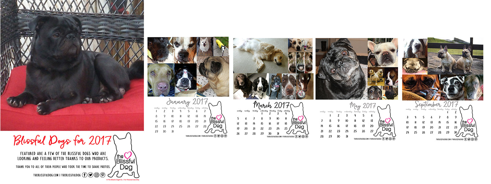 the blissful dog free 2017 calendar