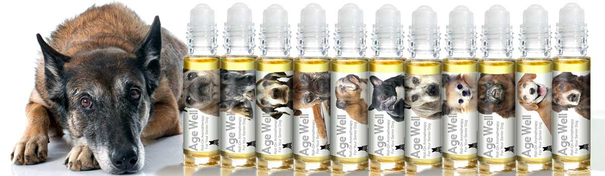 age well senior dog essential oils