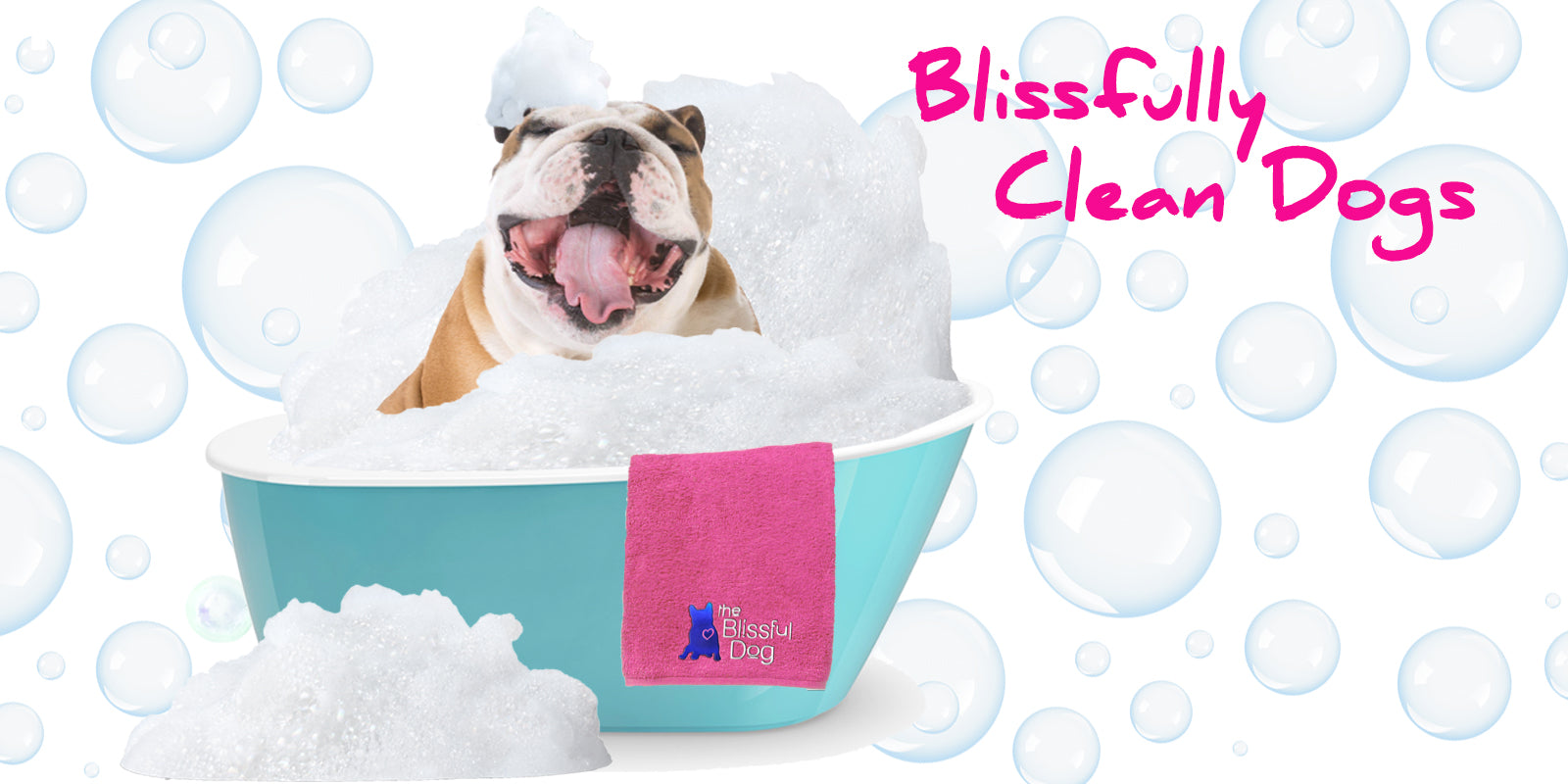Blissfully Clean Dogs