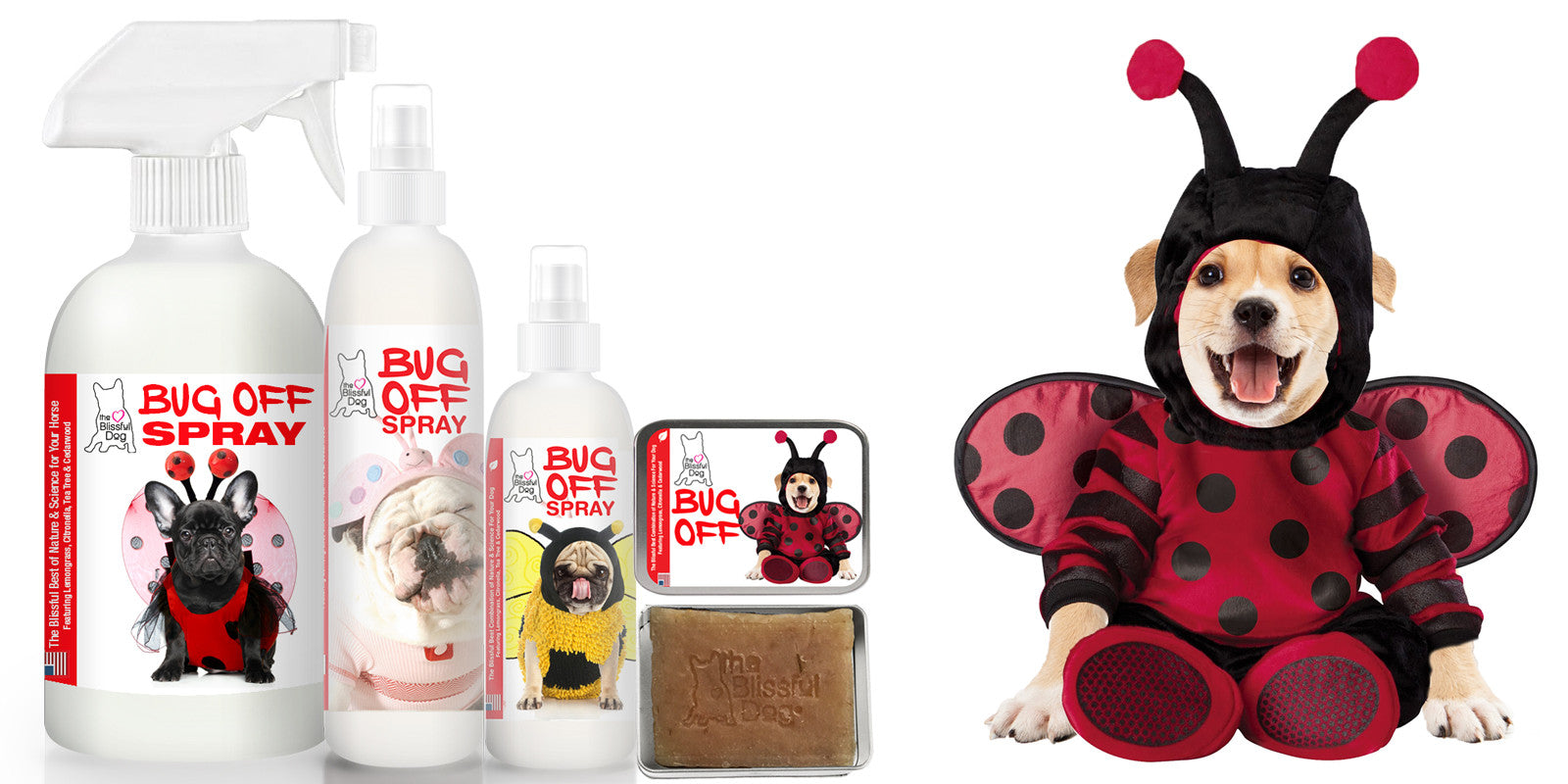 BUG OFF SPRAY FOR DOGS
