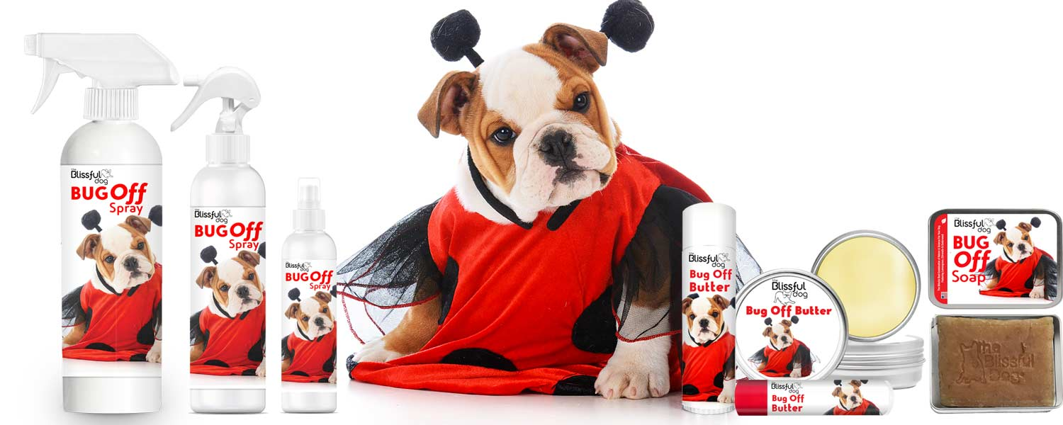 bug off dog insect repellants