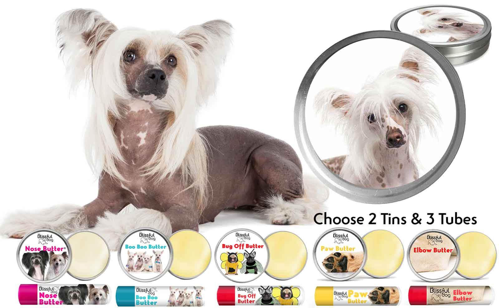 chinese crested skin care