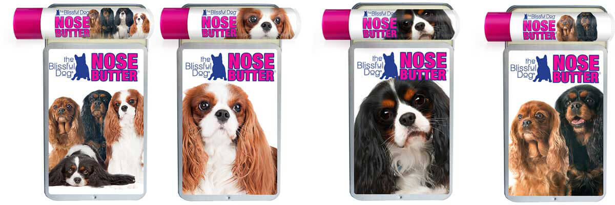 cavalier king charles tin tube combo