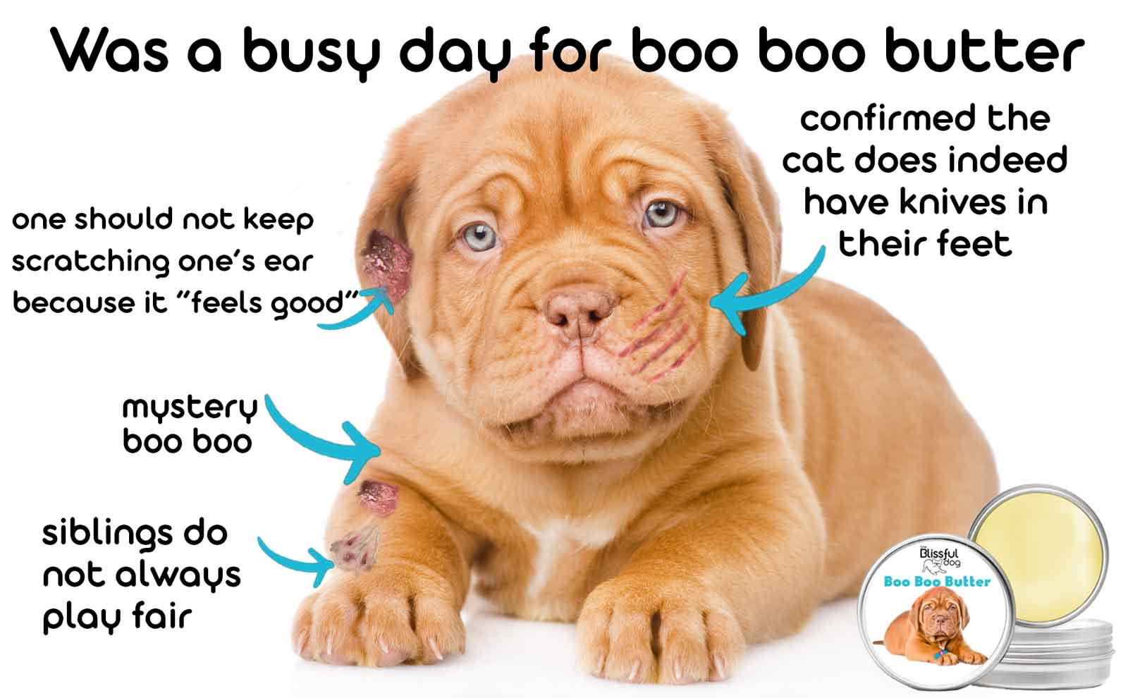 dogue de bordeaux skin care