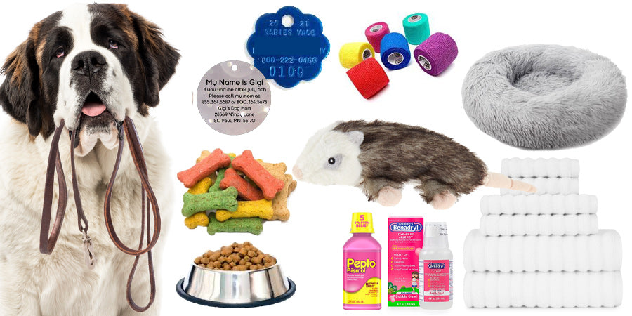 emergency kit for dogs