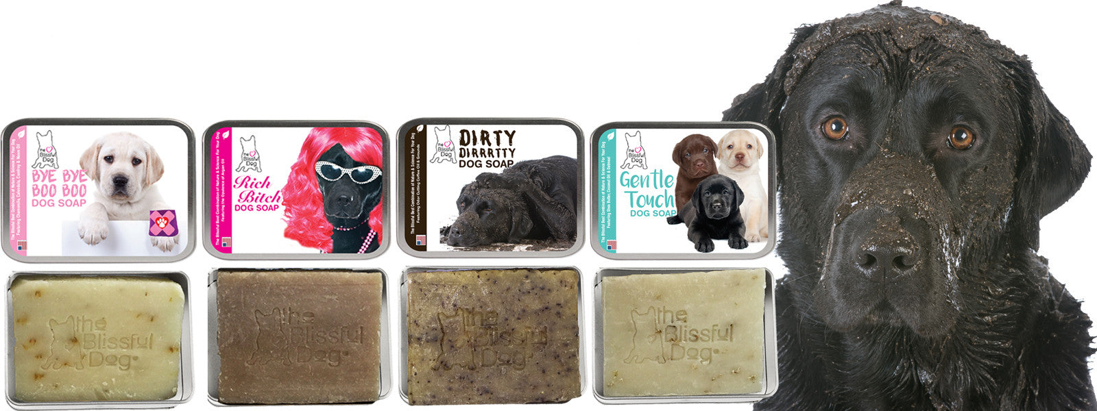 LABRADOR RETRIEVER SOAP