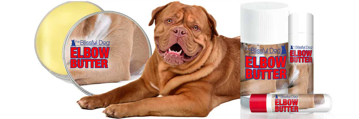 dogue de bordeaux elbow butter