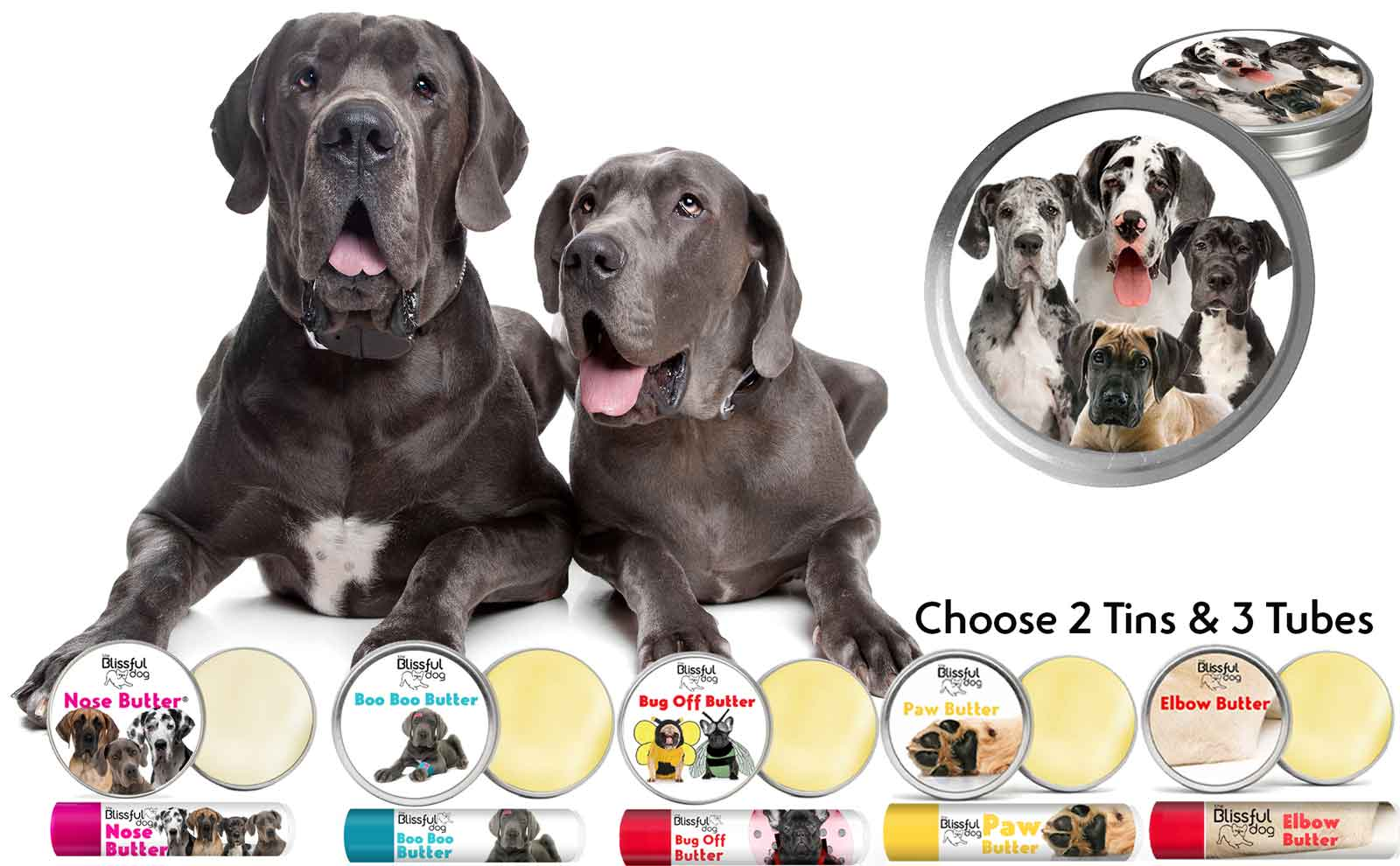 great-dane-skin-care