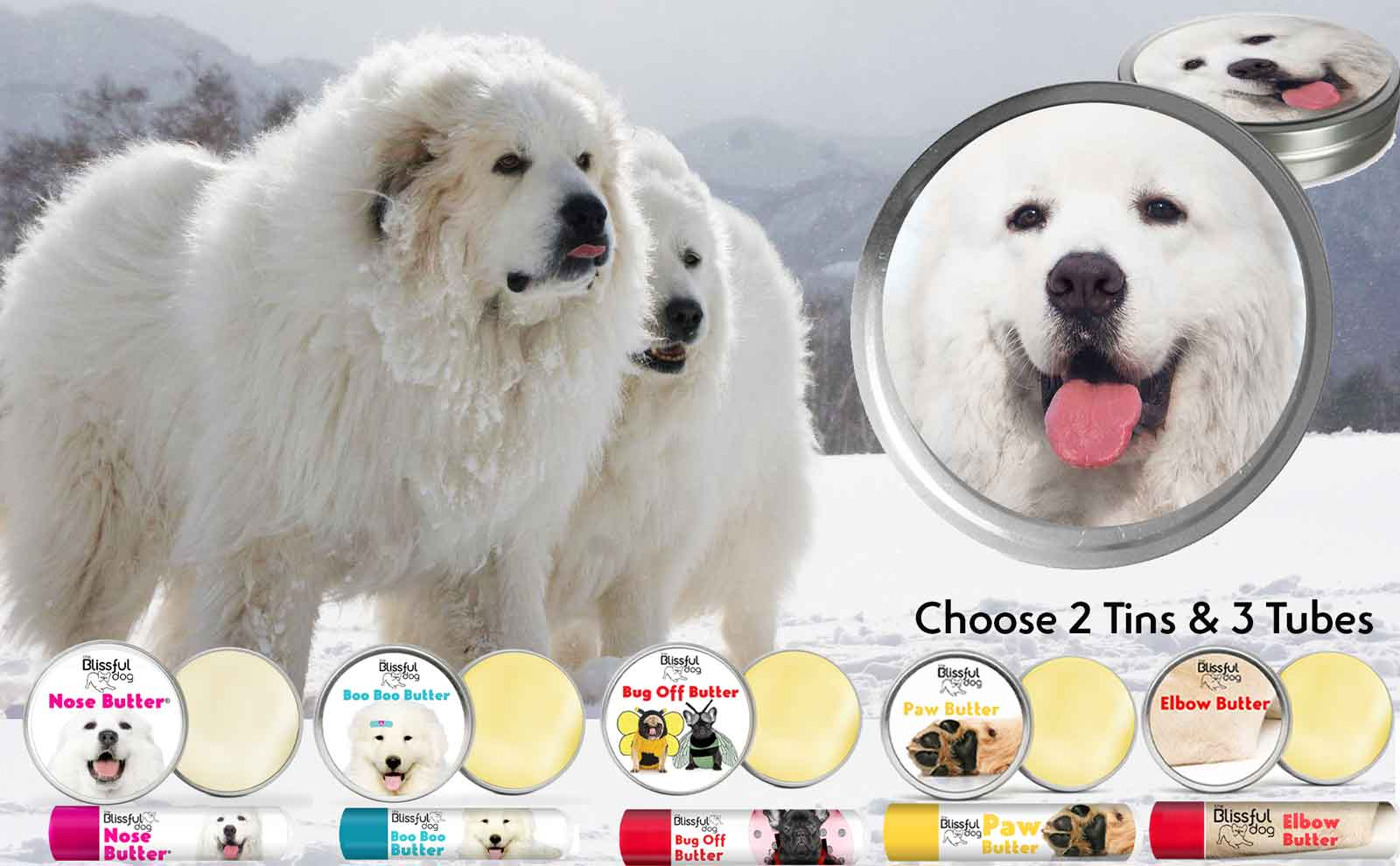 great pyrenees dog skin care