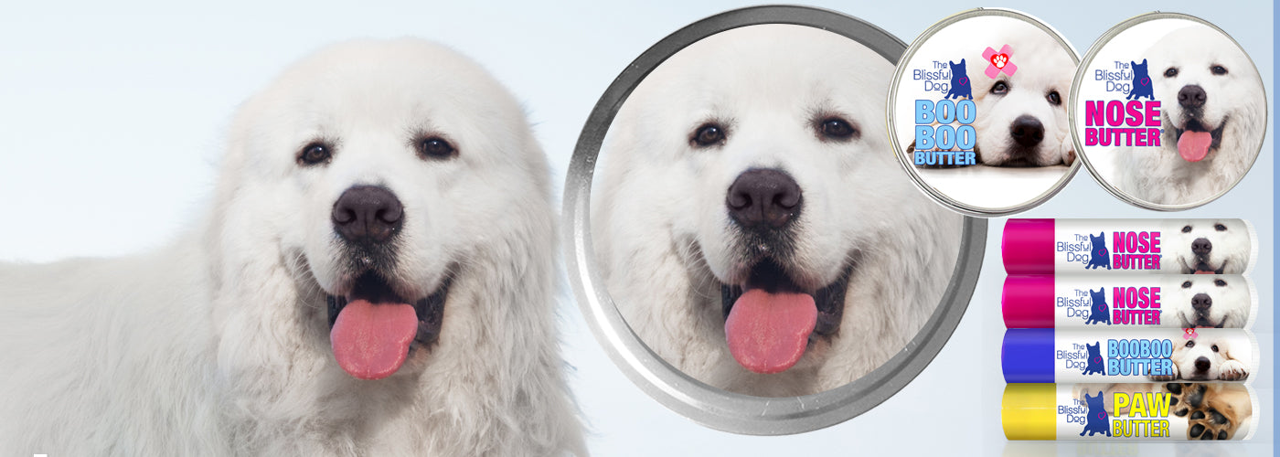 GREAT PYRENEES GIFT