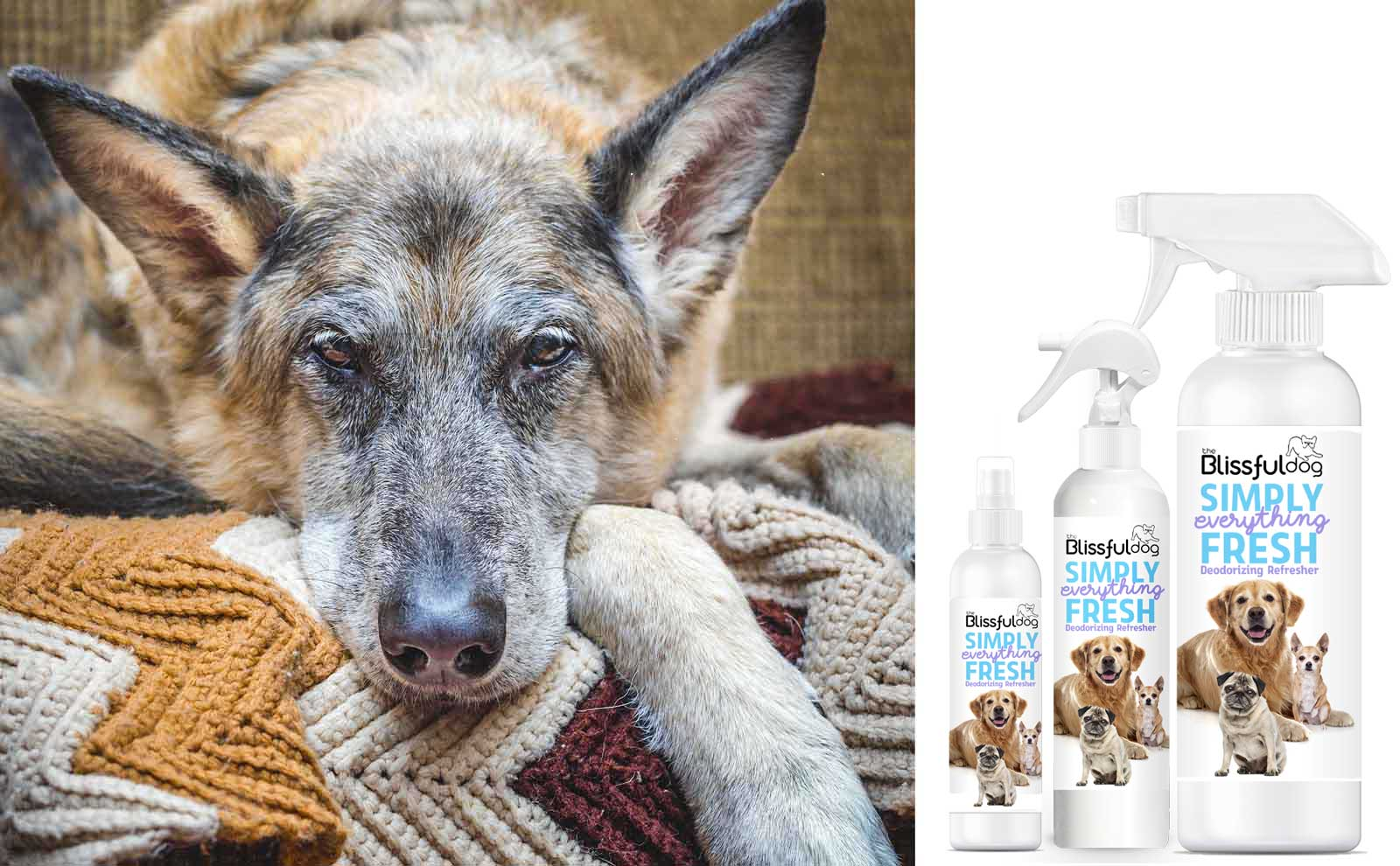 deodorizing spray for senior dogs