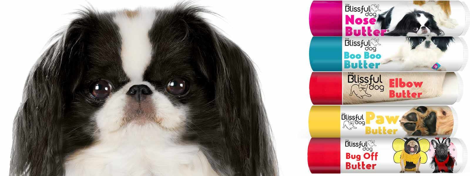 japanese chin care