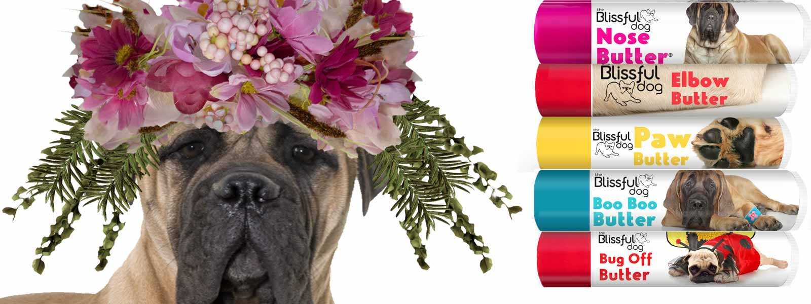 mastiff flower crown