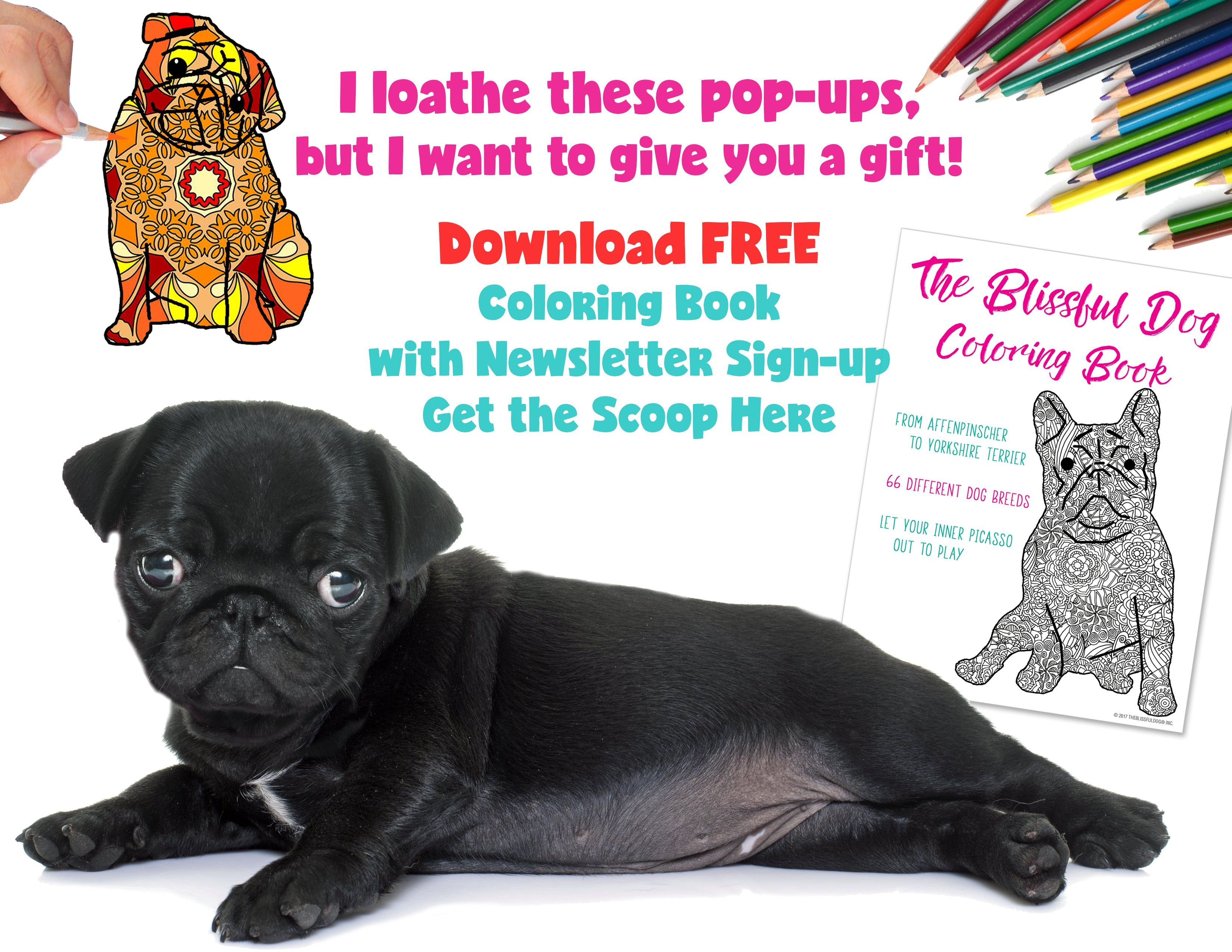 Free Dog Coloring Book