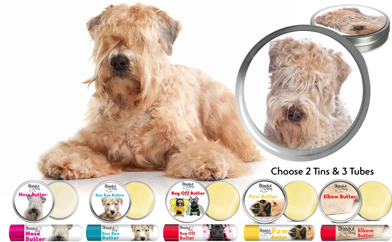 Soft Coated Wheaten Terrier skin care