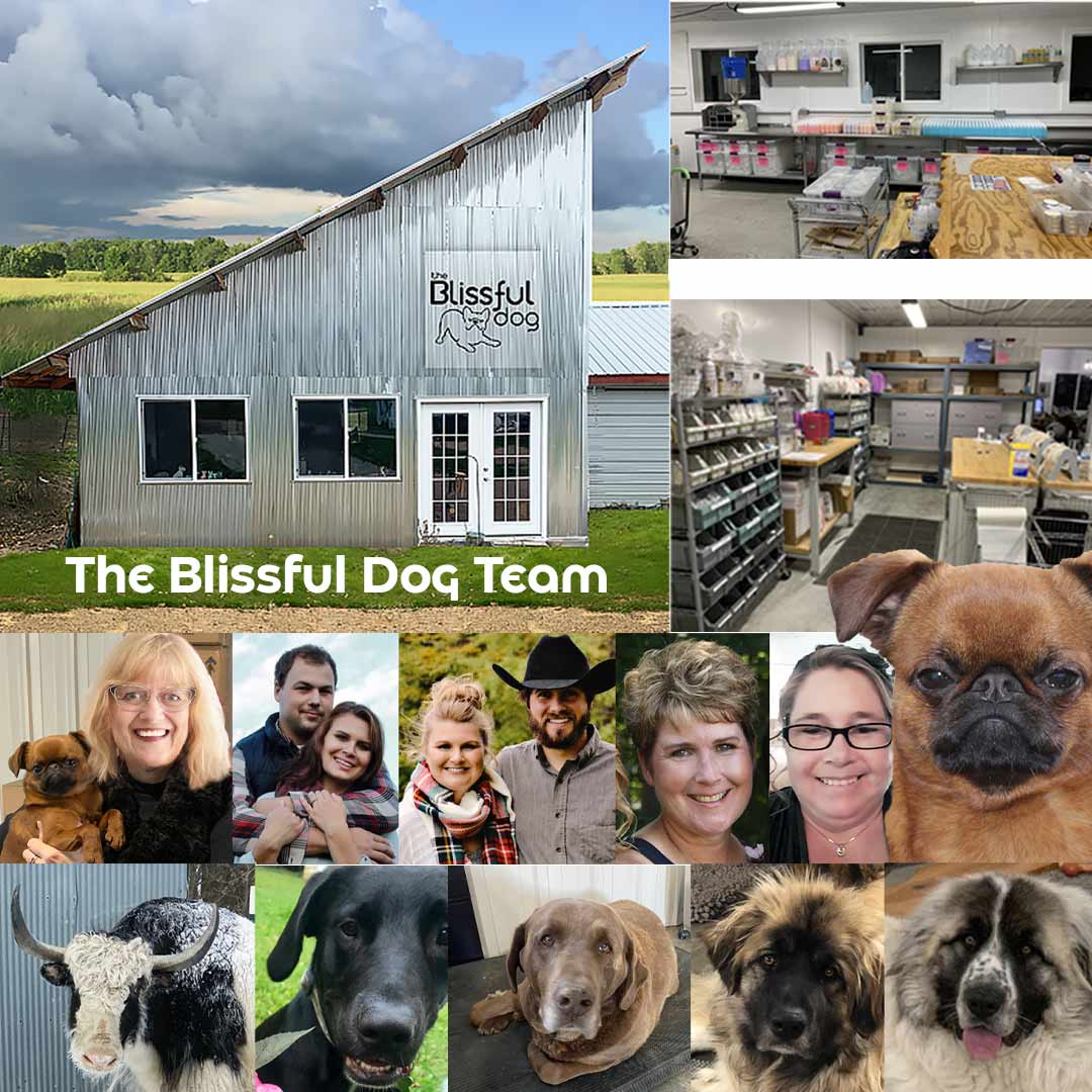 The Blissful Dog Team