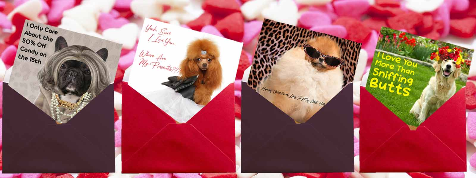valentine's day cards dogs