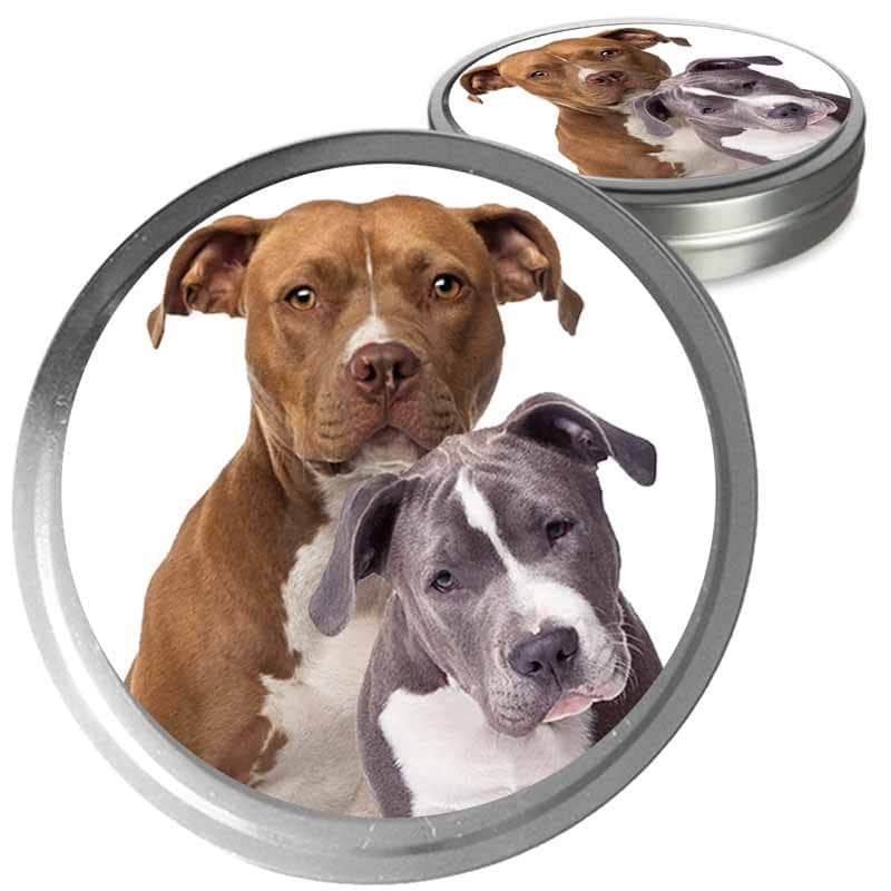 American Staffordshire Terrier Custom Combo