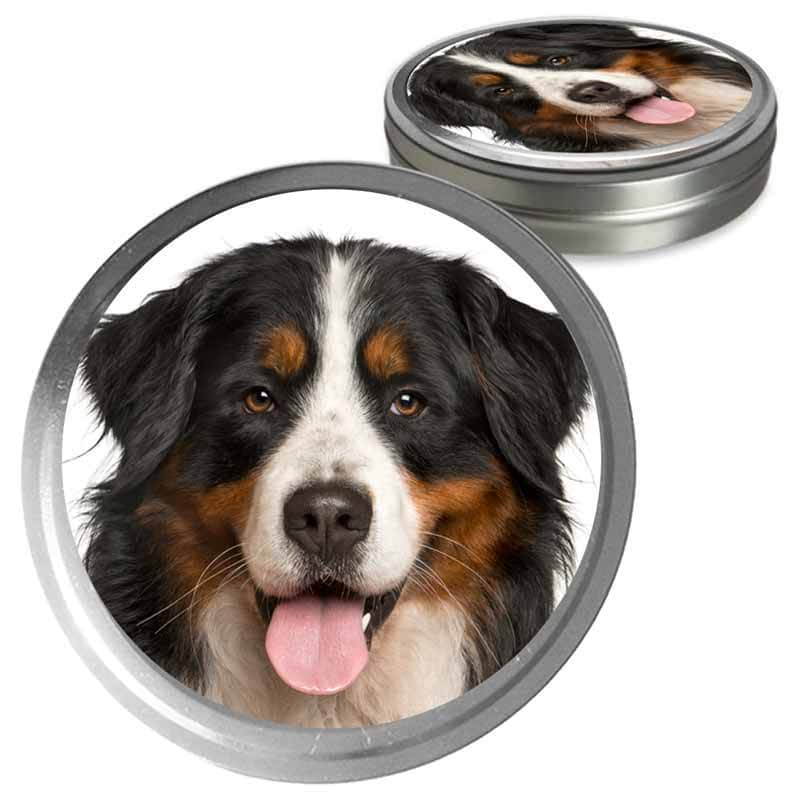 Bernese Mountain Dog Custom Combo